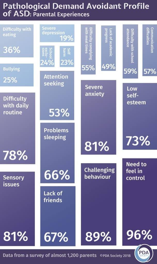 PDA Society - Being Misunderstood - stats