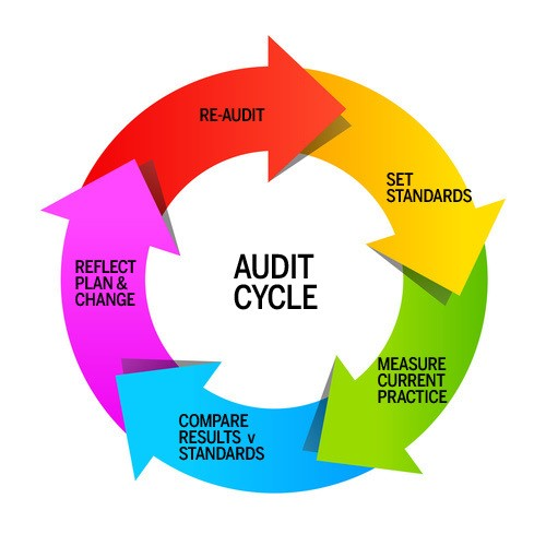 Diagram of the audit cycle