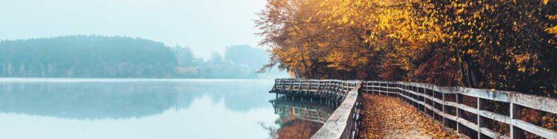 Autumn path by lake