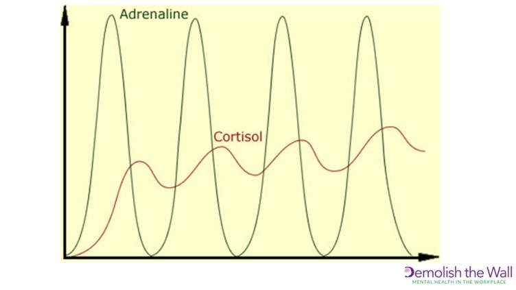 Adrenaline and Cortisol graph